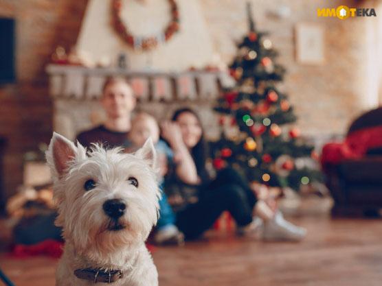 6 съвета за коледна украса на дома