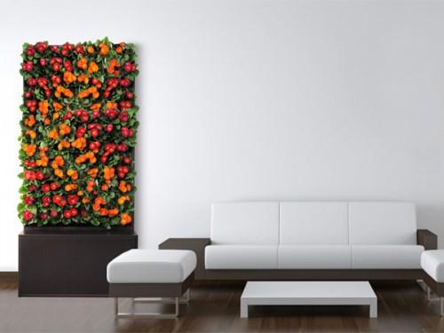 Цветята в жилището - как растенията носят любов и спокойствие